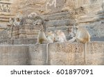 monkey families in the history... | Shutterstock . vector #601897091