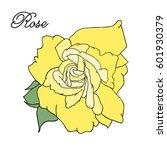 vector rose design elements... | Shutterstock .eps vector #601930379