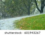 pouring rain in the summer ...   Shutterstock . vector #601943267