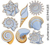 set of colored sea shells.... | Shutterstock .eps vector #601944185