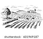 rural landscape field wheat in... | Shutterstock .eps vector #601969187