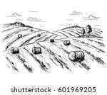 rural landscape field wheat in...   Shutterstock .eps vector #601969205