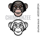 vector illustration or head...   Shutterstock .eps vector #602018924