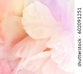 watercolor and flowers abstract ... | Shutterstock . vector #602091251