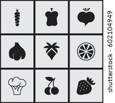 set of 9 editable vegetarian...