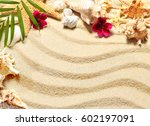sea shell on sand  top view ... | Shutterstock . vector #602197091
