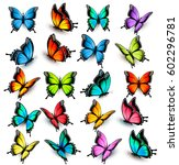 Stock vector collection of colorful butterflies flying in different directions vector 602296781