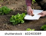 farmer with notebook and pencil ... | Shutterstock . vector #602403089