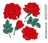 hand drawn red rose flowers and ... | Shutterstock .eps vector #602523305