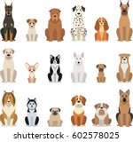 Stock vector vector illustration set of funny purebred dogs on a white background 602578025