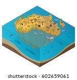 flat 3d isometric africa flora... | Shutterstock .eps vector #602659061