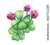 Green Four Leaf Clover With...