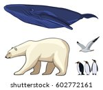 Colorful Arctic Animals Set...