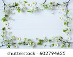background with flowering... | Shutterstock . vector #602794625
