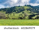 the foothills of central... | Shutterstock . vector #602869079