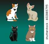cat breed cute pet portrait... | Shutterstock .eps vector #602885795