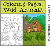 coloring pages  wild animals.... | Shutterstock .eps vector #602912765