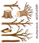 Firewood And Stump Trees ...