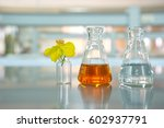clear flask with orange... | Shutterstock . vector #602937791
