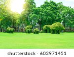 the green lawn is elephant... | Shutterstock . vector #602971451