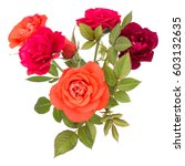 colorful rose flower bouquet... | Shutterstock . vector #603132635