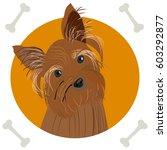 yorkshire terrier. icon  logo ... | Shutterstock .eps vector #603292877
