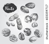 hand drawn set of nuts isolated ... | Shutterstock .eps vector #603359717