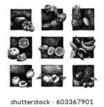 ink hand drawn set of citrus... | Shutterstock . vector #603367901