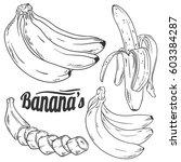 vector set of banana. line art... | Shutterstock .eps vector #603384287