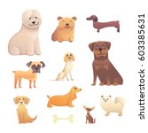Different Type Of Cartoon Dogs...