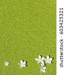 Flowers On The Duckweed