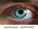 beautiful blue male eye close up | Shutterstock . vector #603515099