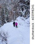 belokurikha  russia   january... | Shutterstock . vector #603598241