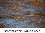 Rapid Stream Of Muddy River