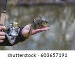 fisherman on the river bank  a... | Shutterstock . vector #603657191