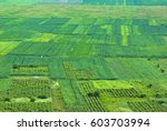 aerial view of rural... | Shutterstock . vector #603703994