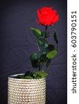 red rose in a vase | Shutterstock . vector #603790151