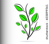decorative floral green plant...   Shutterstock .eps vector #603899561