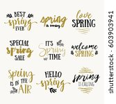 it's spring time lettering... | Shutterstock .eps vector #603903941