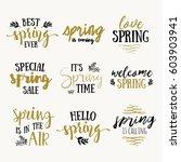 it's spring time lettering... | Shutterstock .eps vector #603903941