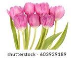 pink tulip flowers bouquet...   Shutterstock . vector #603929189