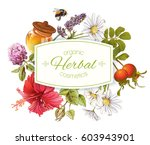 vector herbal cosmetics banner... | Shutterstock .eps vector #603943901