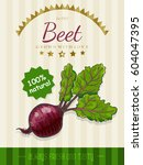 vector poster with a beet in a... | Shutterstock .eps vector #604047395