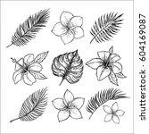 hand drawn vector illustrations ... | Shutterstock .eps vector #604169087