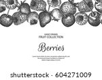 decorative background with... | Shutterstock .eps vector #604271009
