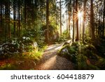 magical scenic and pathway... | Shutterstock . vector #604418879