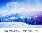 Beautiful Snowy Hills  Trees...