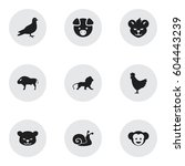 Set Of 9 Editable Nature Icons...