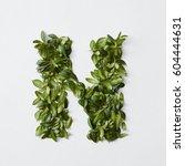 alphabet letters from leaves | Shutterstock . vector #604444631