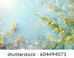 mimosa flowers with sun on blue ... | Shutterstock . vector #604494071